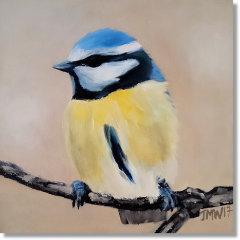 bluetit-with-shadow.png