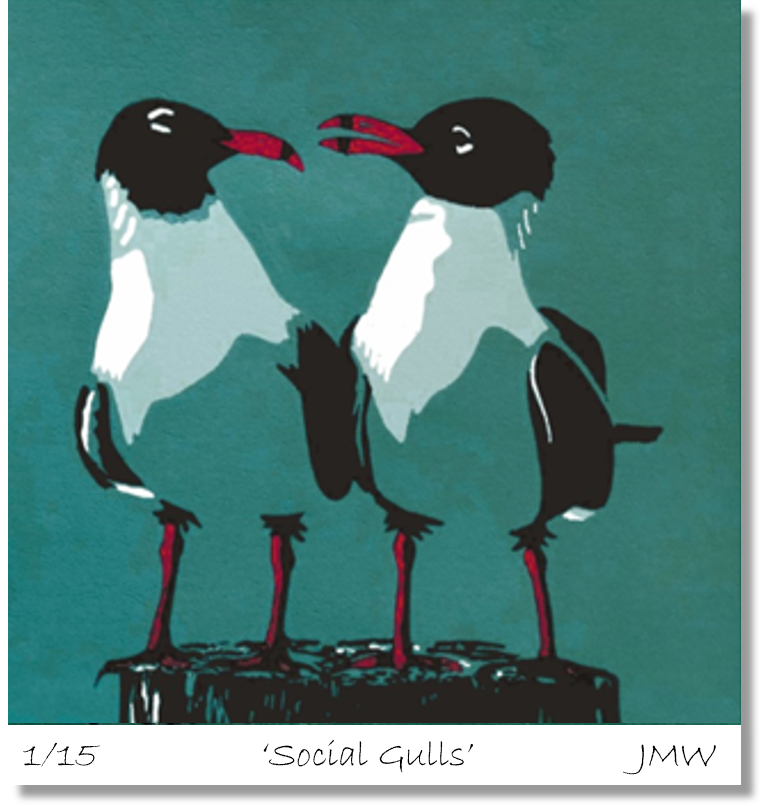 social-gulls-for-artist-page.png