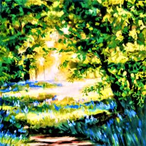Sunlit Glade